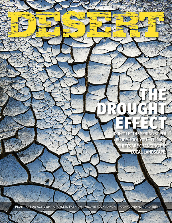 Drought-Cover_web